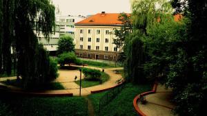 Dizzy Daisy Hostel, Вроцлав