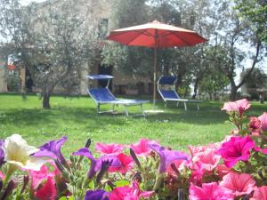 Agriturismo Le Macine, Agriturismi  Magliano in Toscana - big - 27
