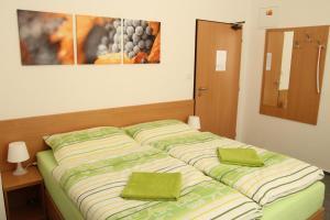 Penzion Bobule, Vendégházak  Staré Město - big - 7