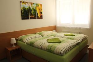 Penzion Bobule, Vendégházak  Staré Město - big - 21