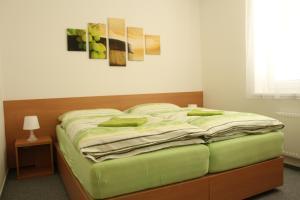Penzion Bobule, Affittacamere  Staré Město - big - 54