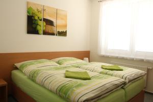 Penzion Bobule, Affittacamere  Staré Město - big - 58