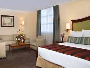 Hotel Francia Aguascalientes, Hotely  Aguascalientes - big - 5