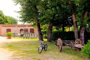 Casa Di Campagna In Toscana, Vidiecke domy  Sovicille - big - 151
