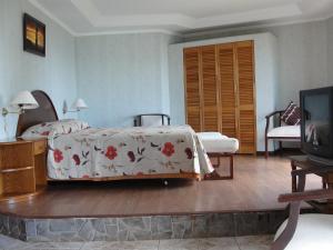 Iorana Isla de Pascua Hotel, Hotels  Hanga Roa - big - 7