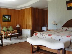 Iorana Isla de Pascua Hotel, Hotels  Hanga Roa - big - 6