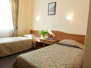 Maxima Zarya Hotel, Hotely  Moskva - big - 55