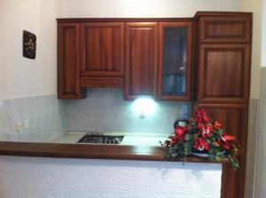 Apartments Paladina, Appartamenti  Mandre - big - 14