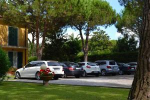 Hotel Villa Fiorisella, Szállodák  Marina di Massa - big - 31