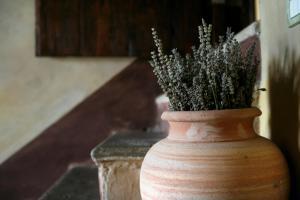 Urbino Resort, Country houses  Urbino - big - 68