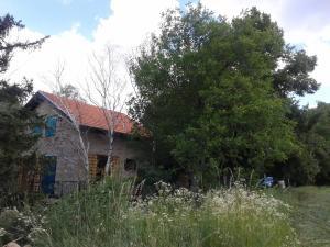 Guest House Vidmar, Гостевые дома  Сремски-Карловци - big - 93