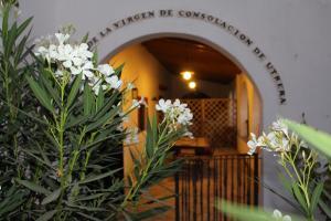 Cortijo El Indiviso, Загородные дома  Вьер де ла Фронтера - big - 20