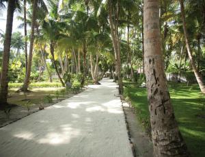 Filitheyo Island Resort (31 of 175)