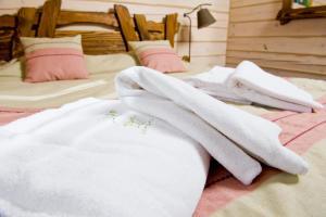 TAOR Karpaty, Hotels  Skhidnitsa - big - 4