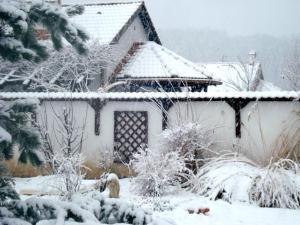 Vila Poiana, Dovolenkové domy  Snagov - big - 6