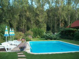 Vila Poiana, Dovolenkové domy  Snagov - big - 29
