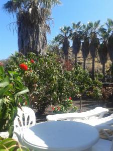 Residencial Casabela, Apartments  Los Llanos de Aridane - big - 64