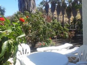 Residencial Casabela, Apartments  Los Llanos de Aridane - big - 16