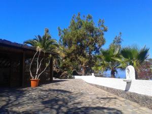 Residencial Casabela, Apartments  Los Llanos de Aridane - big - 33