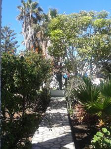 Residencial Casabela, Apartments  Los Llanos de Aridane - big - 34
