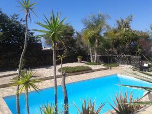 Residencial Casabela, Apartments  Los Llanos de Aridane - big - 39
