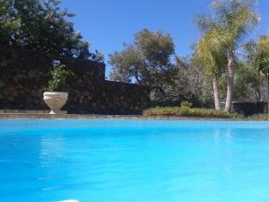 Residencial Casabela, Apartments  Los Llanos de Aridane - big - 37