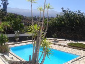 Residencial Casabela, Apartments  Los Llanos de Aridane - big - 55