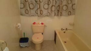C'est Mon Choix Hotel, Hotels  Grand'Anse Praslin - big - 10