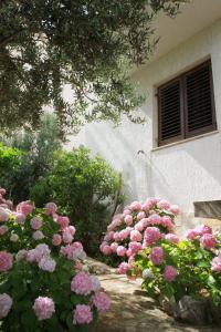 Apartments Sanader, Apartmanok  Trogir - big - 20