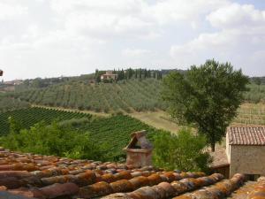 Agriturismo Torraiolo, Apartmanhotelek  Barberino di Val d'Elsa - big - 47