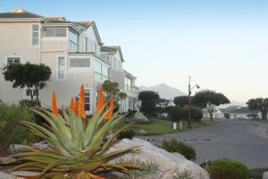 The Potting Shed Self Catering, Apartmány  Hermanus - big - 1