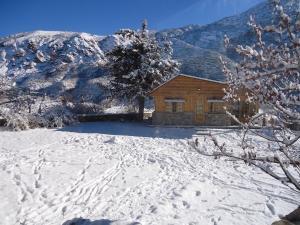 Cabañas Las Retamas, Lodge  Potrerillos - big - 24