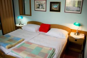 Motel Bosna, Motels  Travnik - big - 2
