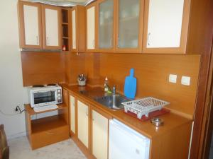 Thomas Palace Apartments, Apartmány  Sandanski - big - 20