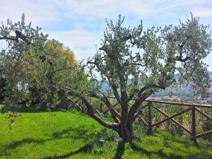 Agriturismo Monte Maggio, Farmy  Lapedona - big - 30