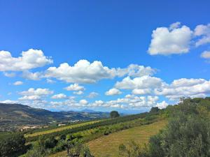 Agriturismo Monte Maggio, Farmy  Lapedona - big - 37