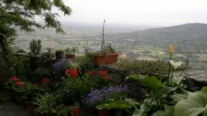 Casa Mia A Cortona, Apartments  Cortona - big - 8