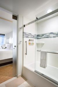 Wellness King with Glass Enclosed Shower