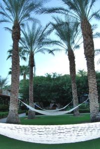 Three-Bedroom Ground Floor Villa Unit 394 by Reynen Luxury Homes, Holiday homes  La Quinta - big - 12