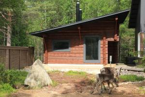 Syöte Cottage - Iso-Syöte