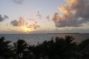 Green Parrot Beach Houses and Resort, Lodge  Maya Beach - big - 44