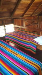 Green Parrot Beach Houses and Resort, Lodge  Maya Beach - big - 5