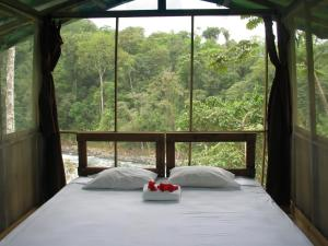 Pacuare River Lodge, Лоджи  Bajo Tigre - big - 4