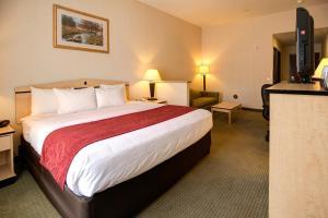 Comfort Inn & Suites Airport Reno, Szállodák  Reno - big - 3
