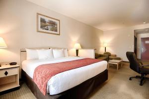 Comfort Inn & Suites Airport Reno, Szállodák  Reno - big - 8