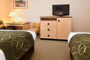 Comfort Inn & Suites Airport Reno, Szállodák  Reno - big - 11