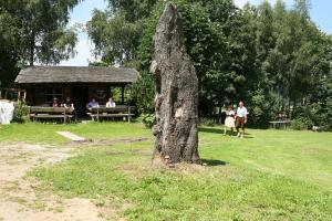 Gasthof zum Sonnenwald, Penziony  Schöfweg - big - 65