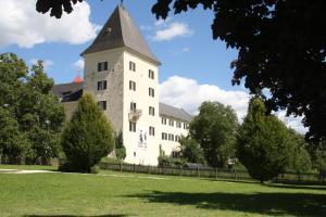 Ferienwohnung Domitian, Appartamenti  Millstatt - big - 26