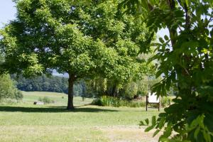 Gasthof zum Sonnenwald, Penziony  Schöfweg - big - 60