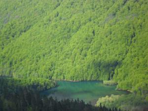 Chalet Scepanovic, Horské chaty  Kolašin - big - 14